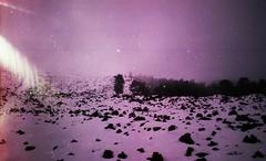 (Victoria Yarlikova) Tags: 35mm zenit mist snow film analog darkroom grain iso100 retro vintage landscape view scan pellicola