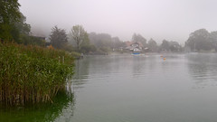 Misty Morning (davee10101) Tags: 2016 austria lake landscape mist wolfgangsee ried salzburg at
