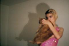 (Ella Dawson-Gorton) Tags: 35mm pentaxmesuper pentax cat filmcamera analogue girlgaze golden shadowplay