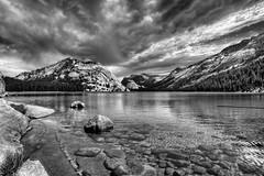 Lake (Doug Santo) Tags: tenayalake tuolumnemeadows yosemitenationalpark tiogapass landscapephotography blackandwhite