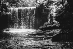 Down In The Jungle. (Louis Alexander Smith) Tags: nikon 50mm nikond750 blackandwhite bw monochrome