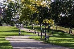 Maana de domingo I (Oscar F. Hevia) Tags: domingo parque sol otoo sunday park sun autumn santullano sanjuliandelosprados asturias asturies espaa oviedo principadodeasturias spain uvieo uviu santuyano otoo espaa uviu
