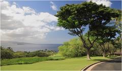 Wailea, Maui (kcezary) Tags: wailea maui hawaii eosm canon
