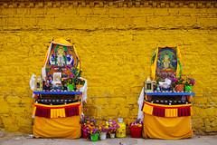 Brilliance (kangxi504) Tags: lhasa tibet buddhism prayer yellow china