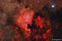Nordamerika- & Pelikannebel (astrofan80) Tags: astronomie cygnus deepsky ngc7000 nebel sommer