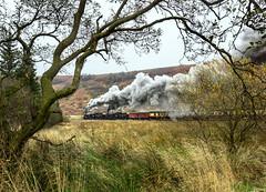 Bog Standard (Kingmoor Klickr) Tags: needlepoint newtondale northyorkshiremoorsrailway nymr northyorkshire 76038 76079 76084 heritage steam railway