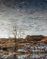 Through the Looking Glass (colinbell.photography) Tags: