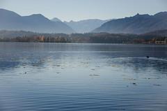 Staffelsee (murnau_am_staffelsee) Tags: landkreisgarmischpartenkirchen dasblaueland ger staffelsee murnau alpen bayern oberbayern