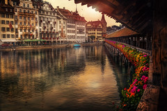 Kapellbrücke (Chrisnaton) Tags: switzerland luzern kappelerbrücke chapelbridge lucerne bridge footbridge reuss city architecture lake flowers swan historiccity rathausquai