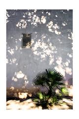 Andalucia (pesce4221) Tags: lichtundschatten sdlicheslicht malaga