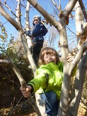 Tree climbing with Edgar and Kevork (RickyOcean) Tags: armenia noragavit kevork edgar treeclimbing fun 111816