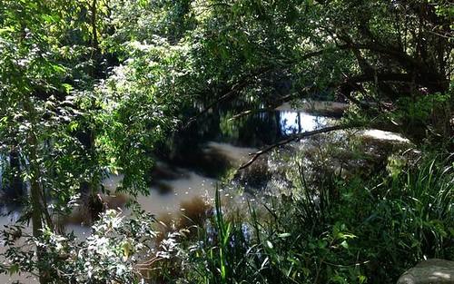 700 Markwell Back Rd, Bulahdelah NSW 2423