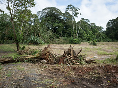 _R062211 (guillermo.d) Tags: upala hurricaneotto huracanotto hurricane huracn costarica grd color