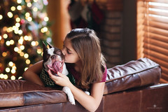(Rebecca812) Tags: dog christmas bostonterrier girl child christmastree twinklelights woodblind home couch love kiss togetherness yawn sweet cute portrait rebecca812 canon