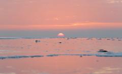 IMG_0024x (gzammarchi) Tags: italia paesaggio natura mare ravenna lidodidante alba sole colore rosa monocrome explore