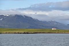 Videy Island View (EC@PhotoAlbum) Tags: iceland islanda reykjavik videy videyisland paesaggio landscape nature ocean