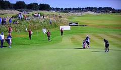 Sights & Scenes From the Archerfield Links (rbglasson) Tags: scotland archerfieldlinks golf landscape tv nikon d5500 nikond5500