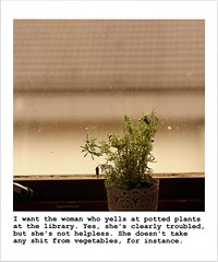 81 (Squidge Scicluna) Tags: plants nature rain window raindrops droplet lavender vegetables library troubled polaroid