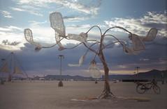 Desert Tree (alvey_ski) Tags: minolta minoltasrt101 portra400 burningman burningman2016 nevada blackrockdesert blackrockcity tree art clouds 35mm