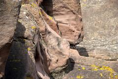 ROCAS-VILAFAMES (CASTELLON-SPAIN) (ABUELA PINOCHO ) Tags: españa musgo spain amarillo roca castellon vilafames