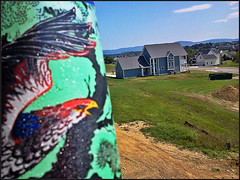 giant bird stalks the countryside (stansvisions) Tags: blue trees red sky black mountains reflection green colors grass birds catchycolors fun outdoors virginia countryside fly us cool construction funny shiny colorful bright bokeh country bluesky sparkle odc odc2 stansvisions