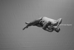 FINA European Masters Championships, Eindhoven 2013, Netherlands, Diving (monsieur I) Tags: people blackandwhite sports water sport canon eos europa europe f14 dive eu sigma competition twist diving human fina masters championships intheair acrobatic canoneos5dmarkiii sigma85mmf14exdghsm monsieuri