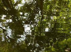 (kuduphoto) Tags: fb kalpetta uploaded:by=flickrmobile flickriosapp:filter=nofilter