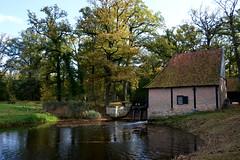 Noordmolen Delden (2013) (l-vandervegt) Tags: holland netherlands nederland watermill twente overijssel niederlande twickel delden watermolen 2013 noordmolen