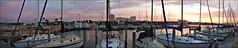 SUNRISE AND SAILBOATS (photogtom43) Tags: panorama clouds sunrise boats florida pano panoramic boating sailboats panamacity corelpaintshoppro downtownmarina nikonaw110
