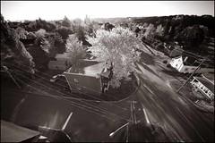 Avez-vous déjà vu des fils électriques de rue sous cet angle? (Réal Filion) Tags: tree automne balloon hotairballoon arbre montgolfier montgolfière