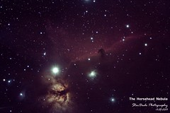 The Horsehead Nebula (StarDude Astronomy) Tags: camping light tree beautiful canon dark photography star joshua space ngc tent astro telescope andromeda galaxy nebula astrophotography m45 m31 orion m42 stunning astronomy triangulum pinwheel dust universe horsehead breathtaking pleiades m83 stargazing m82 m46 2438 bodes stellarvue 60d astrometrydotnet:status=solved sv102ed astrometrydotnet:id=nova163704