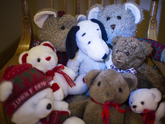 One of These Is Not Like the Others (Jill Clardy) Tags: christmas decorations dog holiday home festive stuffed eyes bears seasonal snoopy decor day348 day348365 3652013 365the2013edition 14dec13 4b4a3046