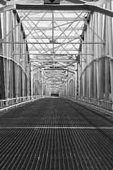 Bridge in Teslin, Yukon (Mysophie08) Tags: bridge canada infocus highquality twothumbsup bigmomma yukoncanada gamewinner teslinyukon thumbwrestler friendlychallenges thechallengefactory fotocompetitionbronze teslinbridge gamex2 herowinner storybookwinner
