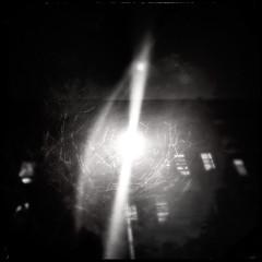 face blind. (jdx.) Tags: nyc newyorkcity trees light urban blackandwhite snow eastvillage newyork abstract tree art monochrome lights manhattan snowstorm hercules iphone east3rdstreet iphoneography hipstamatic