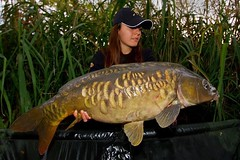 (daniloblasiprimoprofilo) Tags: winter lake fish nature river landscape mirror big amazing fishing italian escape carps carp common picoftheday angler angling karpfen karper carpfishing winterfishing italianguys carpangler instadaily tagsforlike