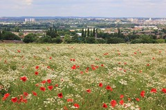 View over Nottingham from Sharphill