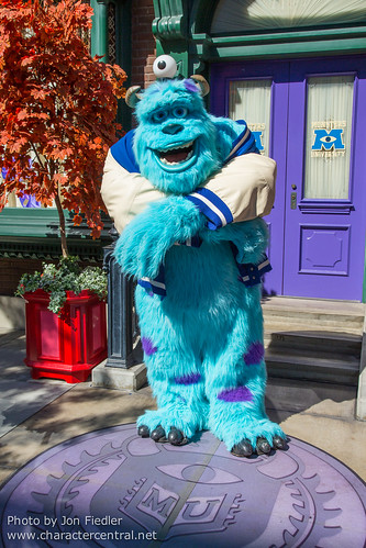 Sulley at Disney Character Central