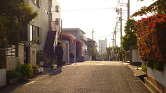 201411 (chihilo) Tags: sunset japan   machida  naruse