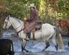 IMG_6041 - Version 2 (blackhawk32) Tags: horses horse cowboys cowboy shell wranglers wyoming cowgirl cowgirls rivercrossing wy wrangler horserunninginwater hideoutlodge