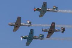 "The ""Desert Rats"" (Norman Graf) Tags: plane airplane desert aircraft airshow rats trainer aerobatics nanchang lukeafb desertrats cj6 lightninginthedesert n620dm n4182c n294tr n555cy lukedays2014 gregslickaguirre mikebeavcarter mikespankylynch patkatogiery"