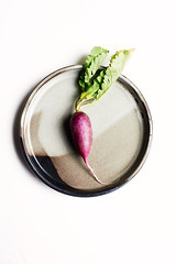 purple-radish (miyukim26) Tags: naturallight radish purple ceramic plate nikond600 alienskin exposurex2 diybackdrop freshproduce vegetable