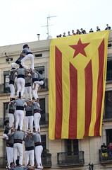 Diada castellera de les colles locals | La Merc 2016 (nicolasarlanzon) Tags: barcelona castellers merce santjaume sagradafamilia sants poblesec gracia jovedebarcelona colla