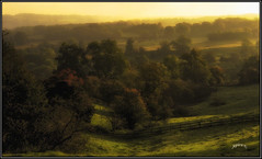 Autumns Touch. (Picture post.) Tags: landscape nature green autumn mist trees fence colour shadows paysage arbre brume turning hills interestingness golden hour subdued light