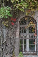 DSC_0752 (grzbac) Tags: paac any okno palace window lezany
