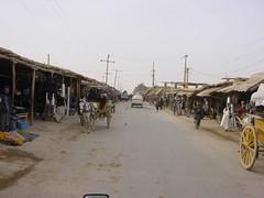 kholm (Vearalden) Tags: afghanistan mazare sharif northern alliance daryae suf camel wrestling kholm kunduz