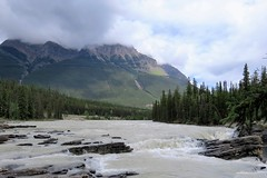 Looks Innocent Enough (Patricia Henschen) Tags: jaspernationalpark athabascafalls athabasca river waterfall rapids jasper canada parkscanada parcscanada parcs parks northern rockies mountains rocky pacific northwest alberta mountain icefieldsparkway