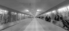 defused tunnel (Robert Benatzky Picture) Tags: defuse entschrft blackandwhite schwarzweis tunnel frankfurtairport robertbenatzkypicture einfarbig