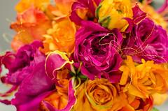 TCWA16-21 (FestivitiesMN) Tags: gold pink fuschia orange brial garden rose ranunculus gloriosa