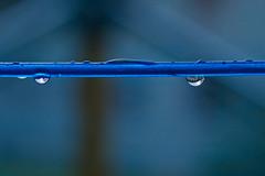 Wascheleine mit Wassertropfen (juergen_gryska) Tags: blau wassertropfen makro bokeh