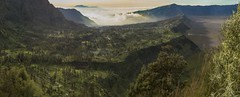 Fineart Landscape (ajsharma22) Tags: ajsharmaphotography indonesia landscape fine art fineart bromo tengger national park nature outdoor green greenery clouds fog trees cliff mountain volcano